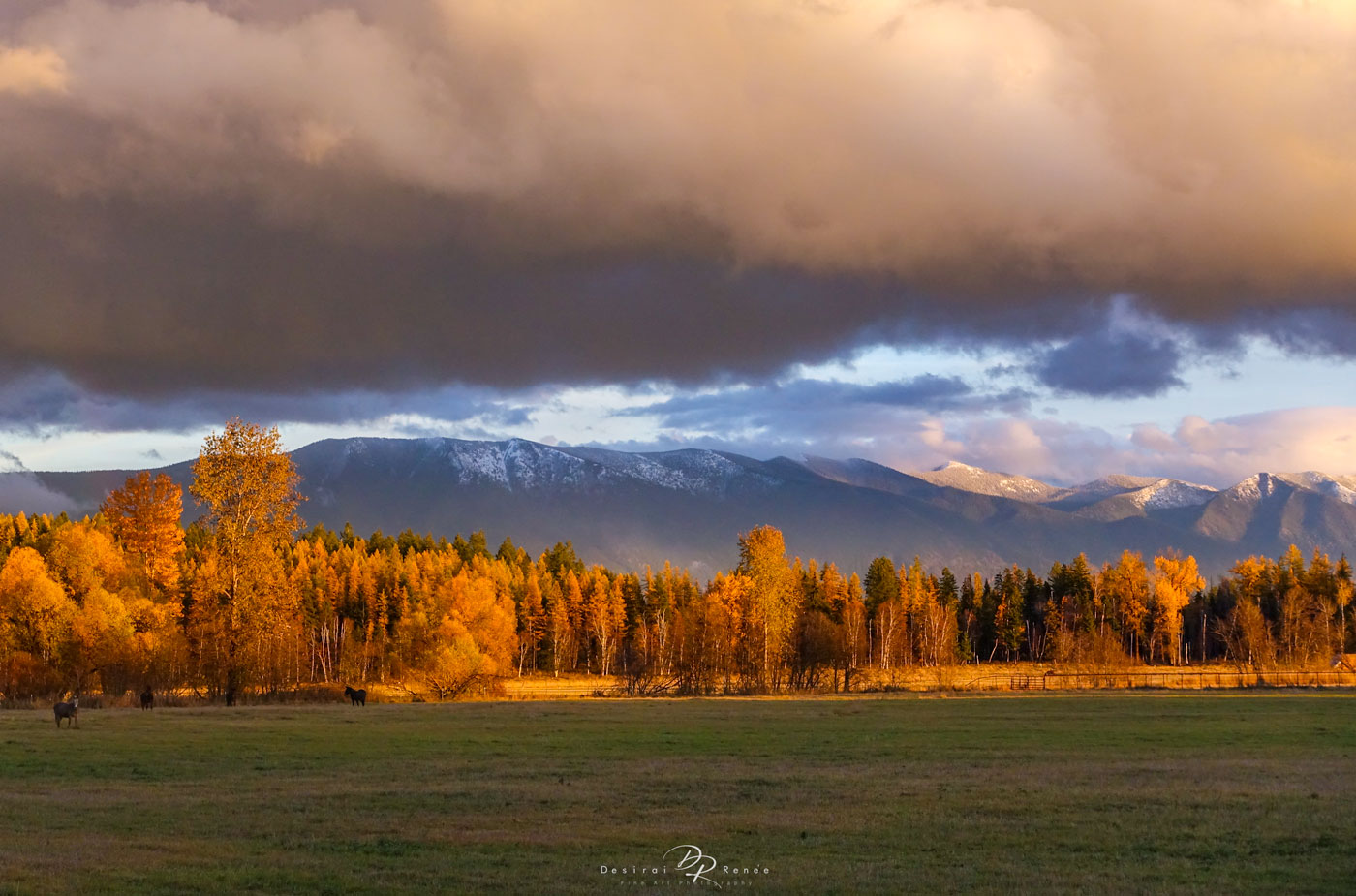 Whitefish, Montana, photo